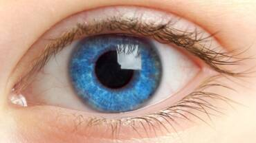 Zanimljivosti o oku