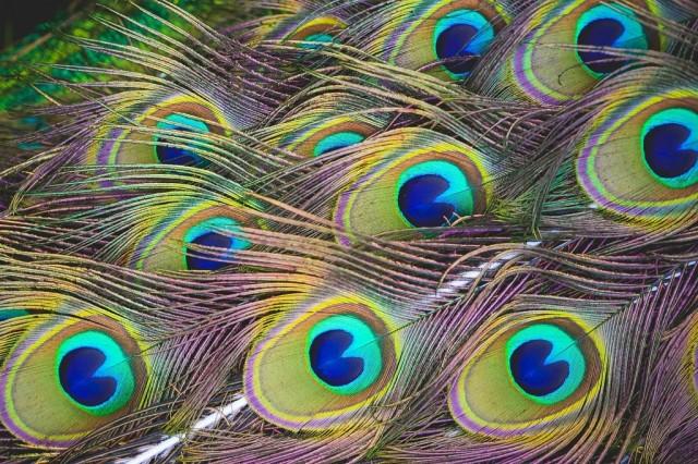 Prosečan broj boja koje možemo razlikovati je oko million.