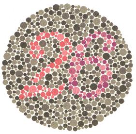 26 – Osobe koje normalno raspoznavaju boje vide broj 26. 6, nejasni 2 – Osobe koje ne raspoznaju crvenu boju vide broj 6. Osobe koje samo u manjoj mjeri imaju poteškoća s raspoznavanjem crvene boje će također vidjeti i broj 2, ali manje jasno. 2, nejasni 6 – Osobe koje ne raspoznavaju zelenu boju vide samo broj 2. Osobe koje samo u manjoj mjeri imaju poteškoća s raspoznavanjem zelene boje će također vidjeti i broj 6, ali manje jasno.