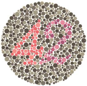 42 – Osobe koje normalno raspoznavaju boje vide broj 42. 2, nejasni 4 – Osobe koje ne raspoznaju crvenu boju vide broj 2. Osobe koje samo u manjoj mjeri imaju poteškoća s raspoznavanjem crvene boje će također vidjeti i broj 4, ali manje jasno. 4, nejasni 2 – Osobe koje ne raspoznavaju zelenu boju vide samo broj 4. Osobe koje samo u manjoj mjeri imaju poteškoća s raspoznavanjem zelene boje će također vidjeti i broj 2, ali manje jasno.