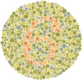 6 – Osobe koje normalno raspoznavaju boje vide broj 6. Ništa – Većina osoba s poteškoćom u raspoznavanju boja ne vide nikakav ili vide pogrešan broj.