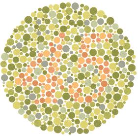 45 – Osobe koje normalno raspoznavaju boje vide broj 45. Ništa – Većina osoba s poteškoćom u raspoznavanju boja ne vide nikakav ili vide pogrešan broj.